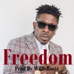 AUDIO - Shatta Wale - Freedom (Prod. By Willis Beatz)