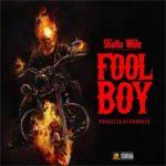 MUSIC MP3 - Shatta Wale - Fool Boy (Bufalo Diss)
