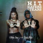 MUSIC MP3 - Wendy Shay ft. Shatta Wale - H.I.T (Haters In Tears)