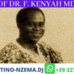 MIXTAPE - Best Of Dr. F. Kenyah Mix - DJ.MARTINO-NZEMA.DJ
